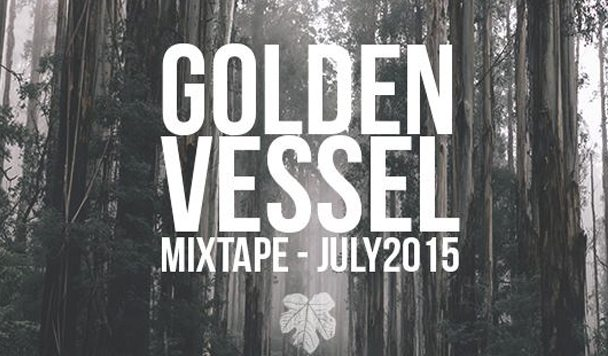adamNOTeve mixtape - Golden Vessel - acid stag