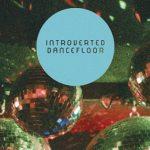 Introverted Dancefloor - Deconstructed Mixes - acid stag