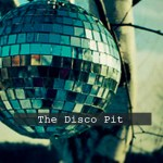 The Disco Pit, Pleasure Principle, Dynamique, Allure, BluBird, Marquis Hawkes - acid stag