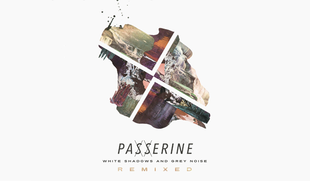 Passerine's 'White Shadows & Grey Noise' Remixed [Premiere]