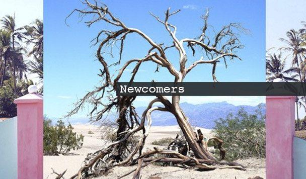 AUS Newcomers: Simo Soo, Summer Blanket, Dusk Rider, Miles Glyphers & ESSIE