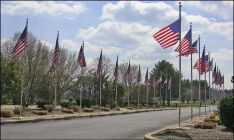 flags-at-Veterans-Cemetery-photo-C-Mackellar