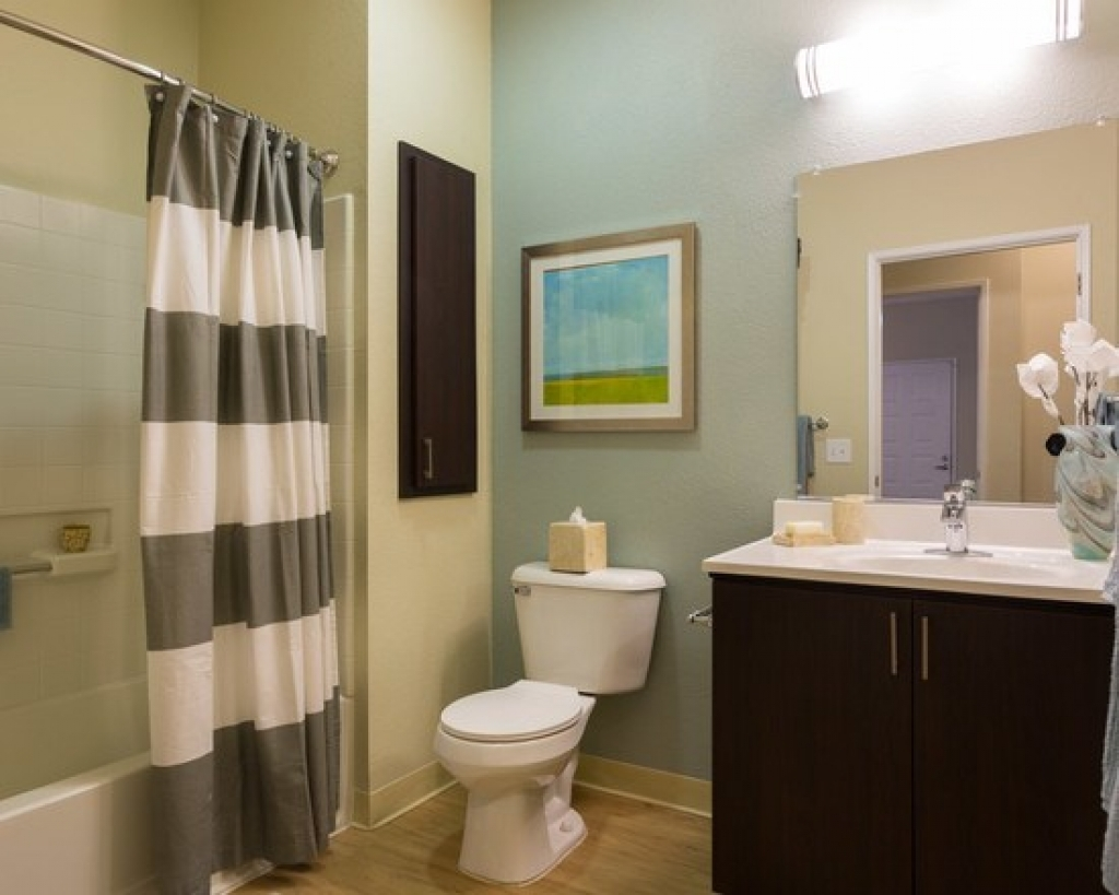 Apartment Bathroom Ideas Decorating Image Of Bathroom And Closet