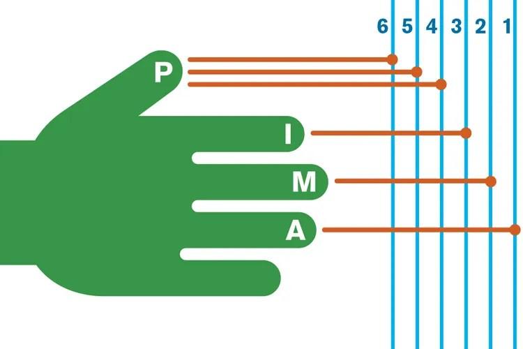 AG306_picking_hand_2