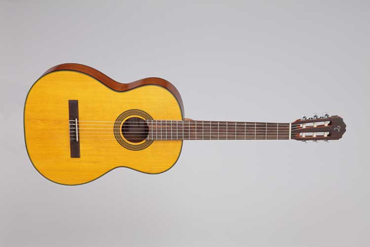 http://acousticguitar.com/7-traditional-and-contemporary-nylon-string-guitars-under-500/
