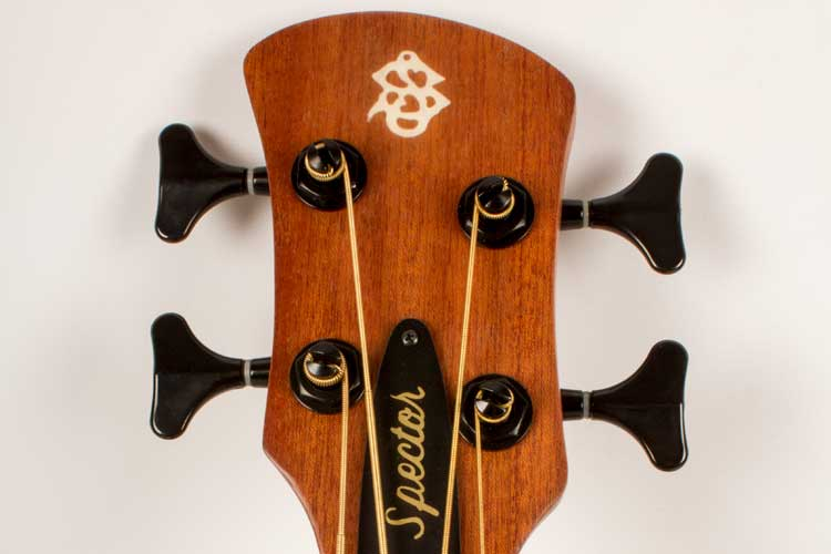 spector_bass_headstock