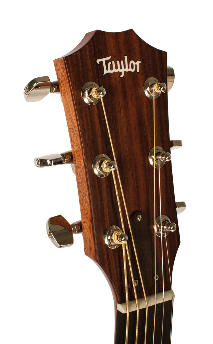 Taylor_Headstock