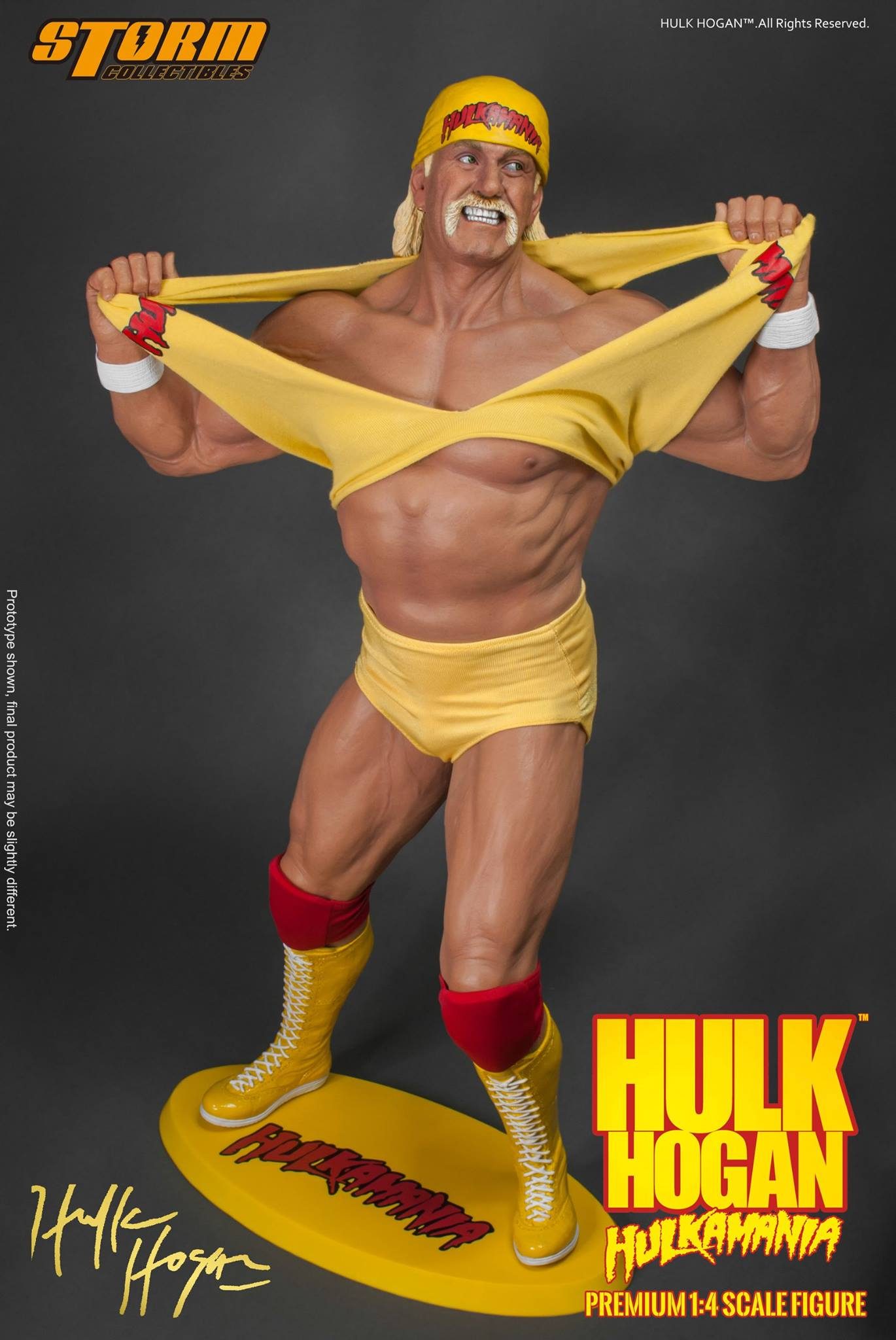 Hulk Hogan 2017 Hulk Hogan Figures By Storm Collectibles