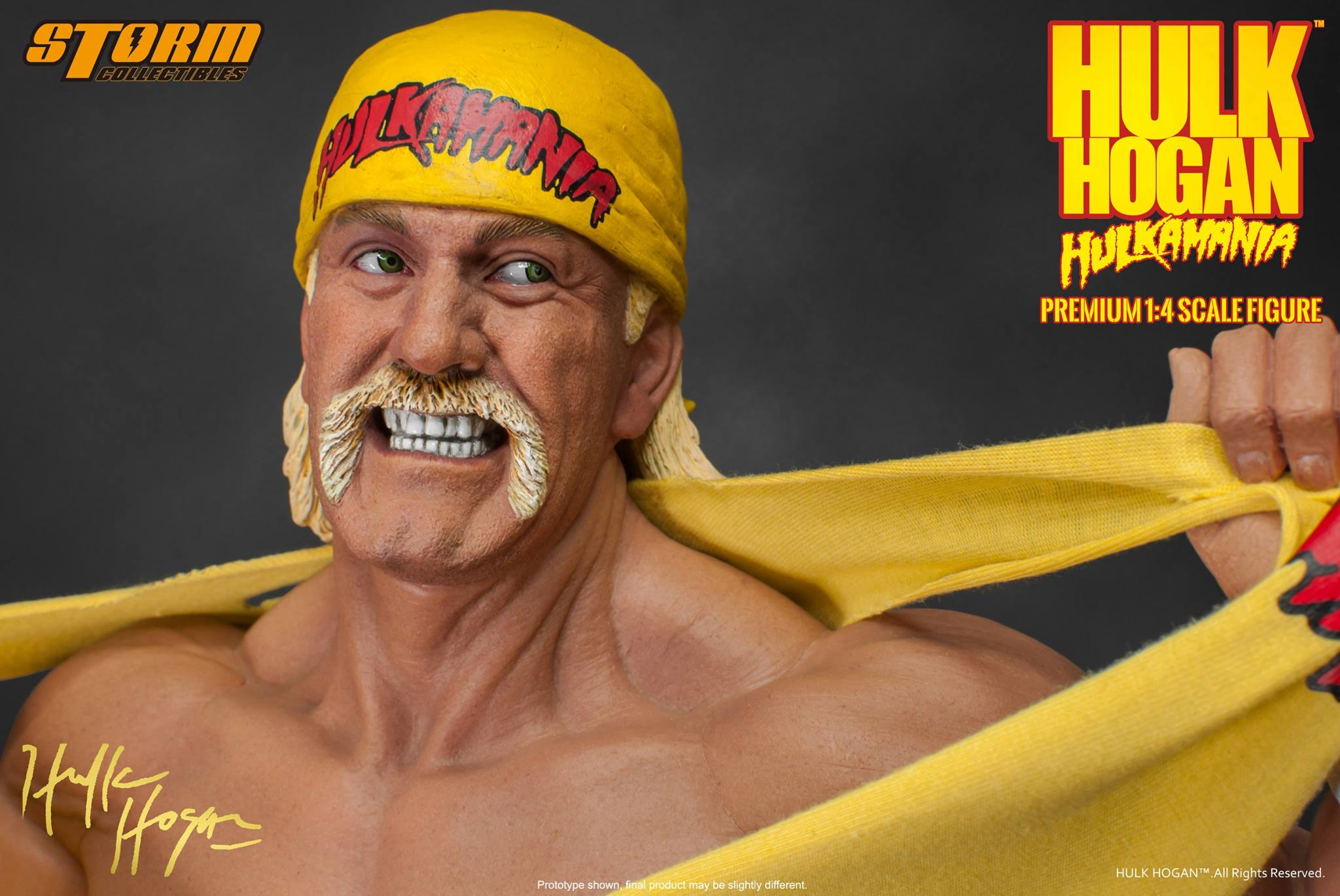 Wwe Hulk Hogan Hulk Hogan Figures By Storm Collectibles