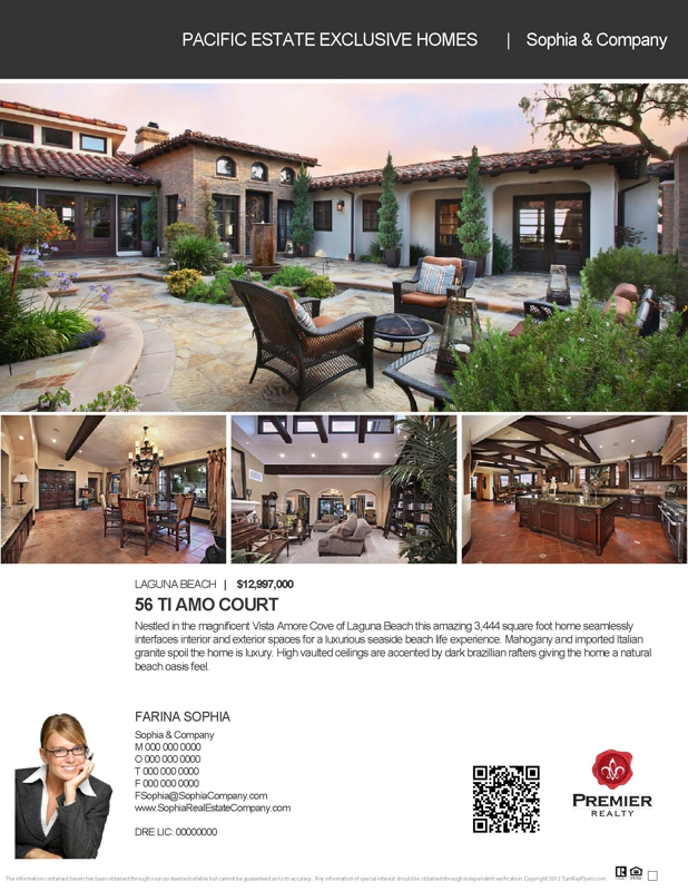 New Real Estate Flyer Template