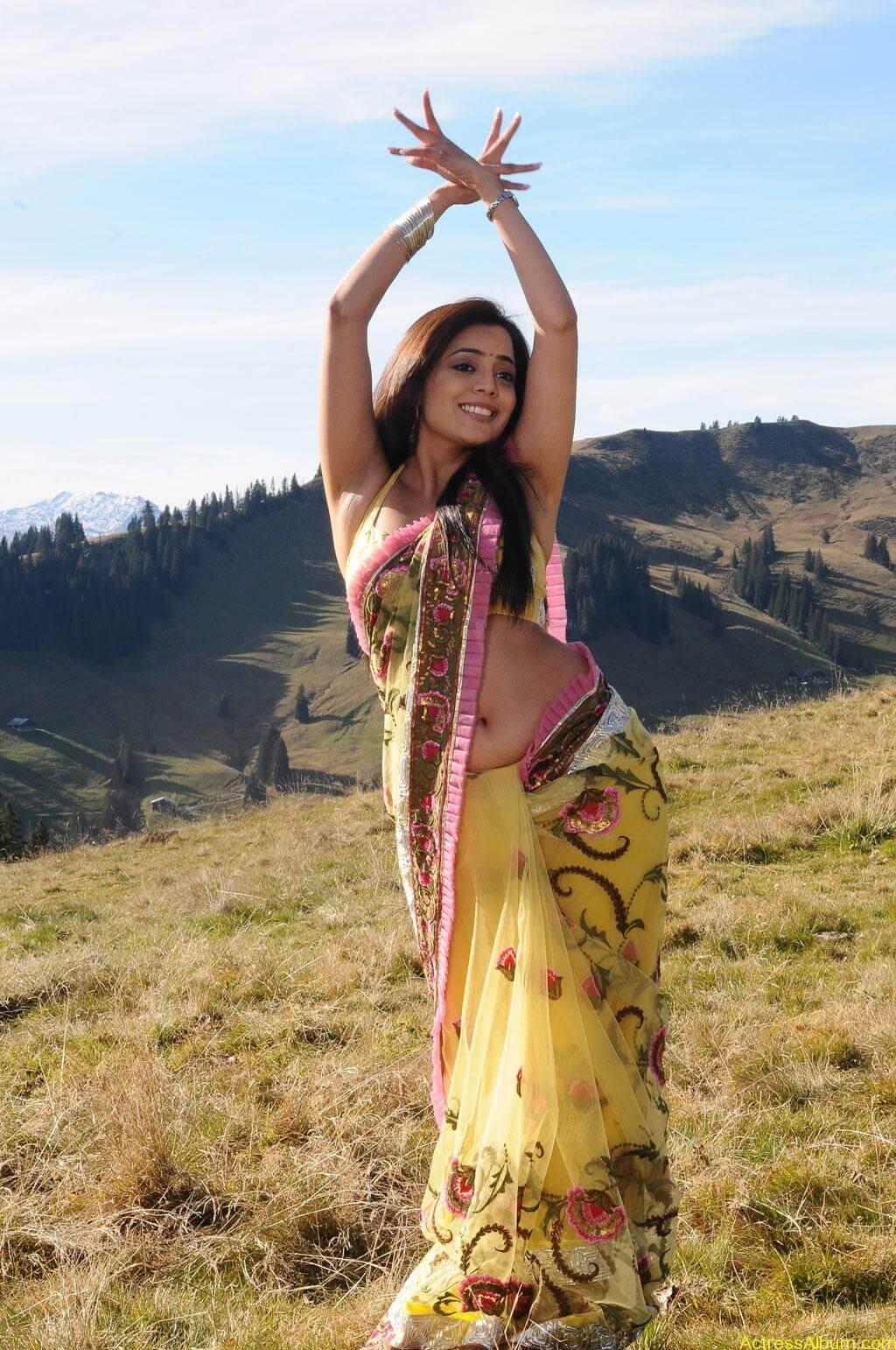 Nisha Agarwal Hd Wallpaper Nisha Agarwal Spicy Hot Navel Show Photos Actress Album