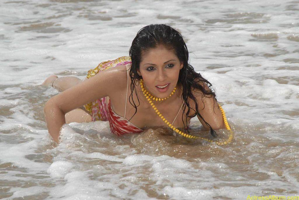 Akshara Haasan Cute Wallpapers Actress Sada Hot Swimsuit Pics At Beach Actress Album