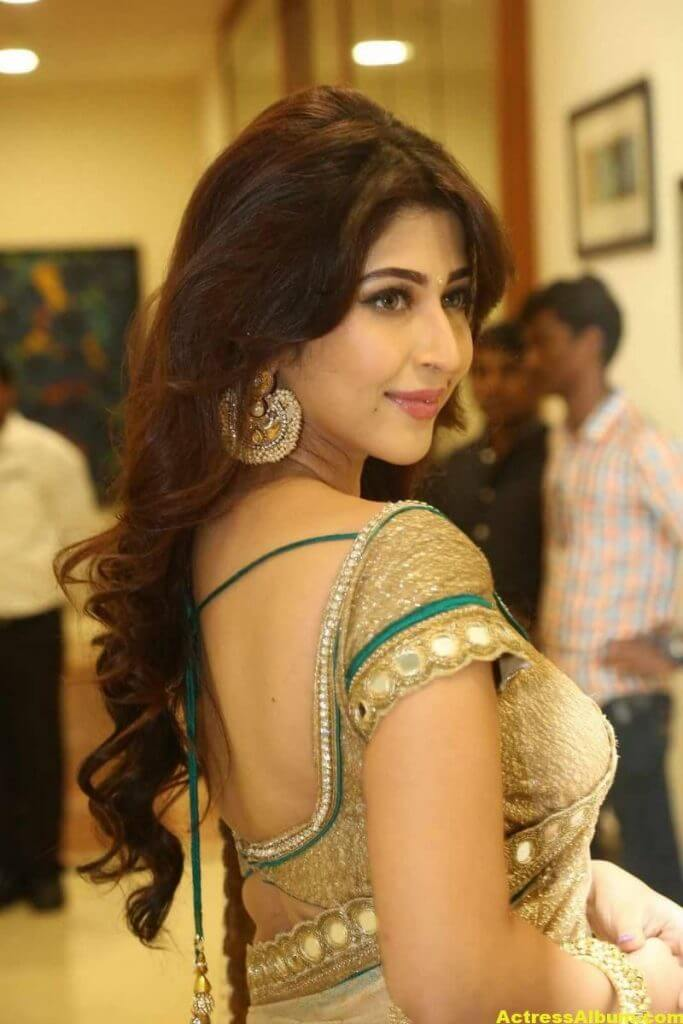 Akshara Haasan Cute Wallpapers Sonarika Bhadoria Stills In Hot Yellow Saree Actress Album