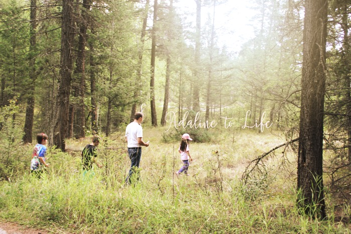 Great Family Activity in Kootenay National Park: Geocaching