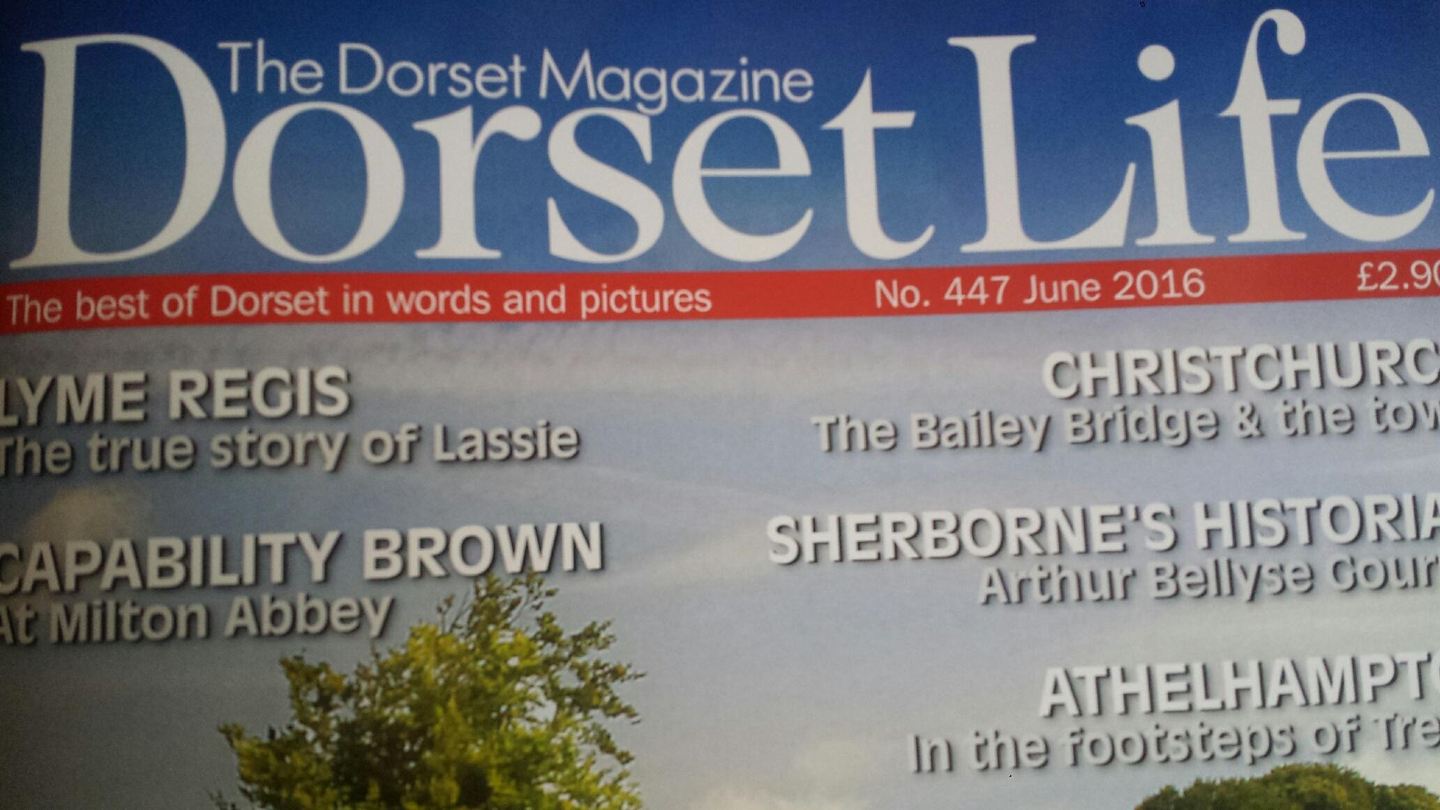Dorset header
