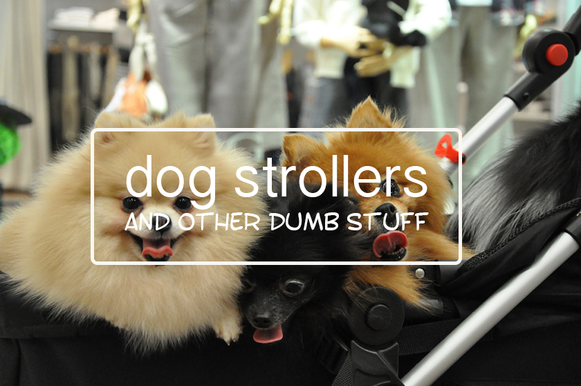 Dog Strollers and Other Dumb Stuff