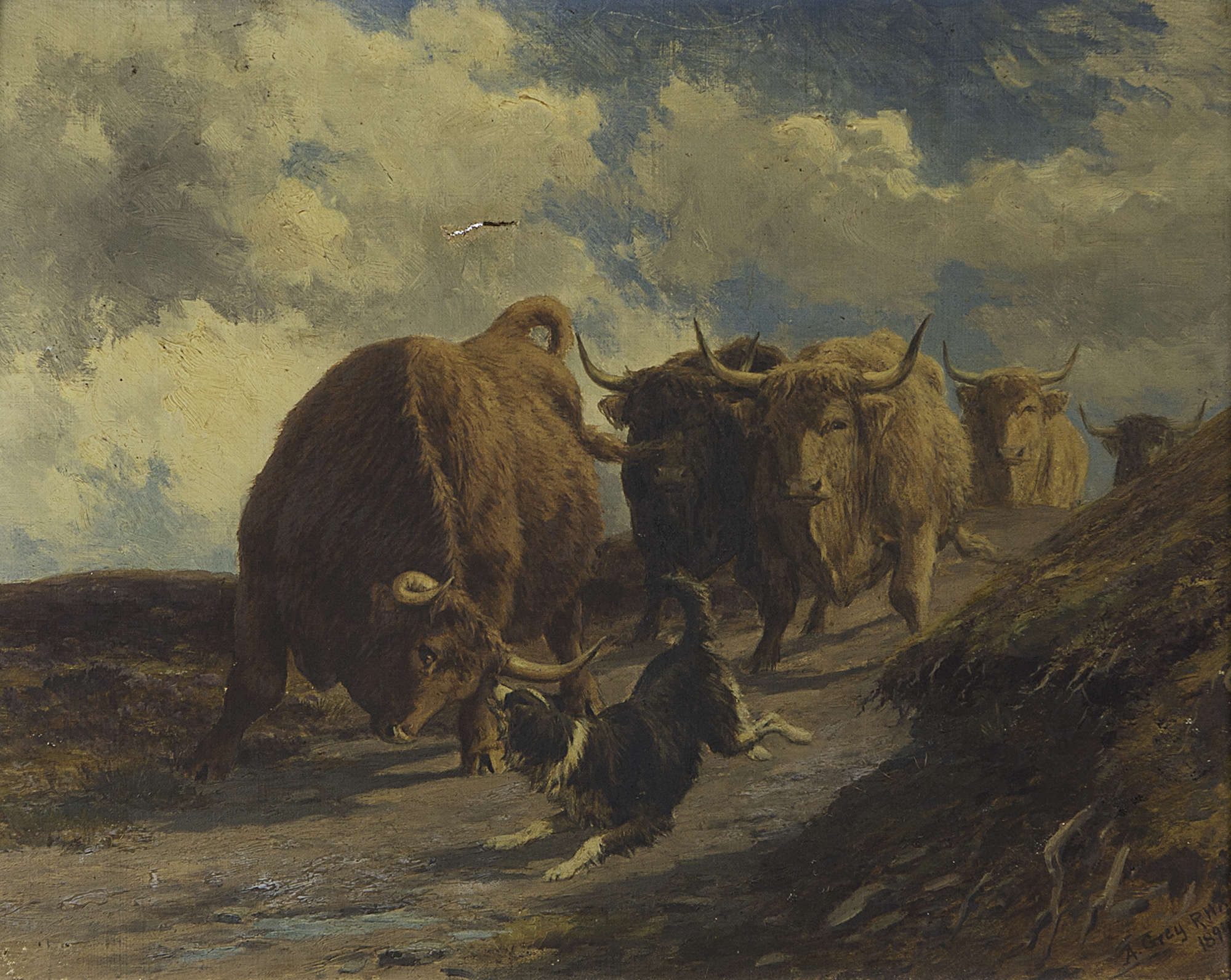 Lot 471 Alfred Grey Rha 1845 1926 Keeping The Herd Together Oil On Canvas 40 X 50cm Signed And Dated 1894