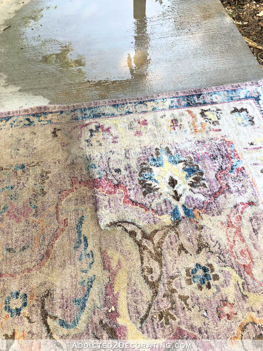 Machine Wash Rugs How To Clean An Area Rug The Fun Way Hint Get Out Your Power