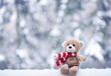 sad teddy bear in snow