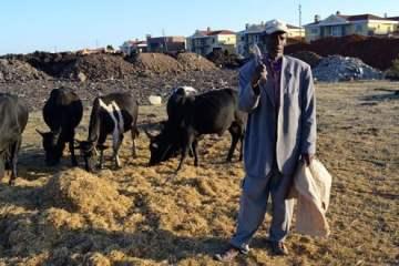 Ethiopian-farmer-Mulugeta-Mezemir