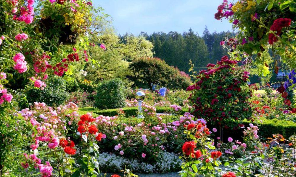 Sursa foto: The Butchart Gardens