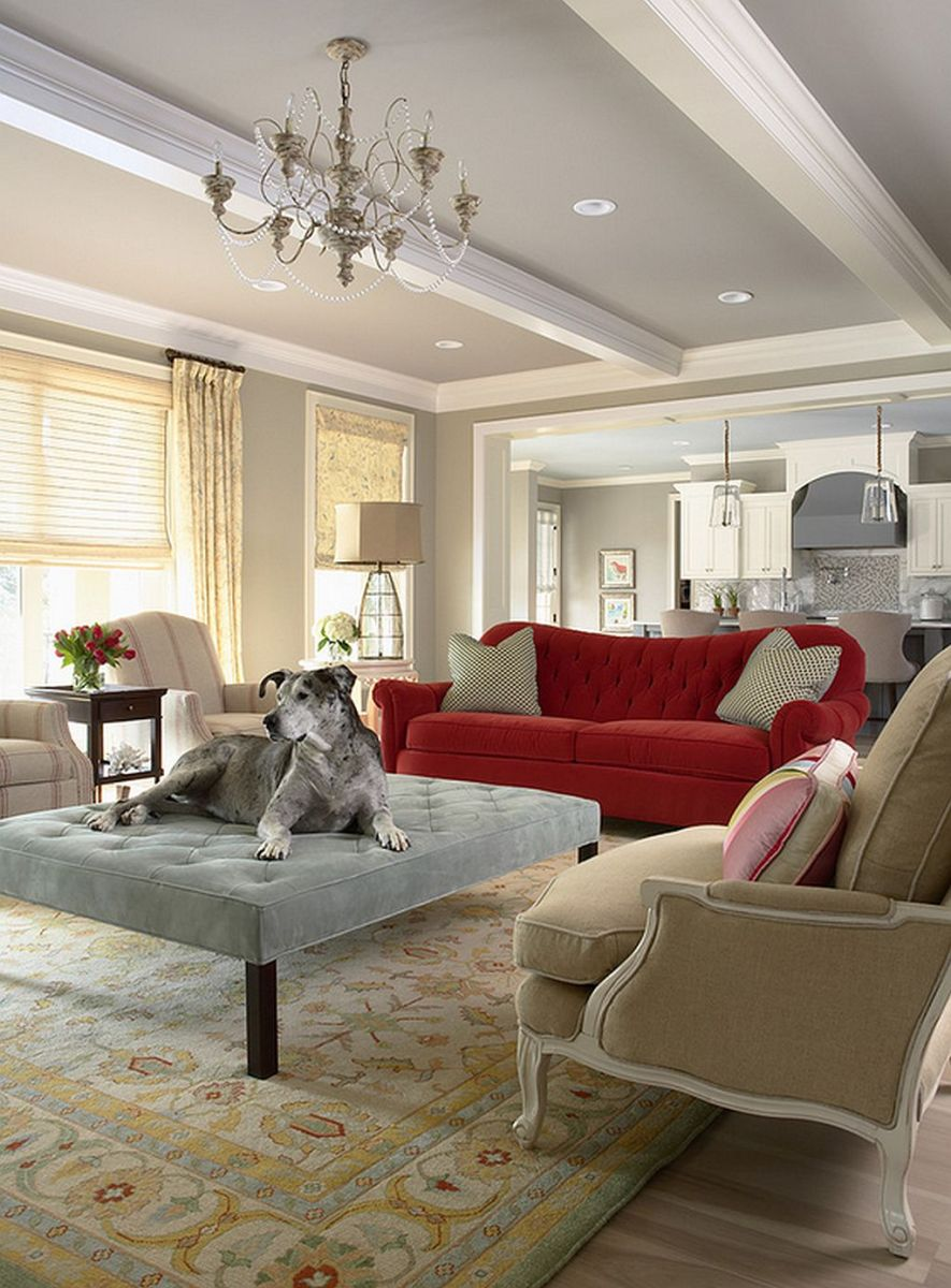 Locuinta eleganta pentru o familie cu copii si animale de companie