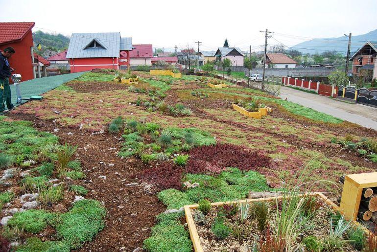 adelaparvu.com despre acoperis verde la Berca, gradina pe acoperis, design si executie Arta Gradinilor (5)