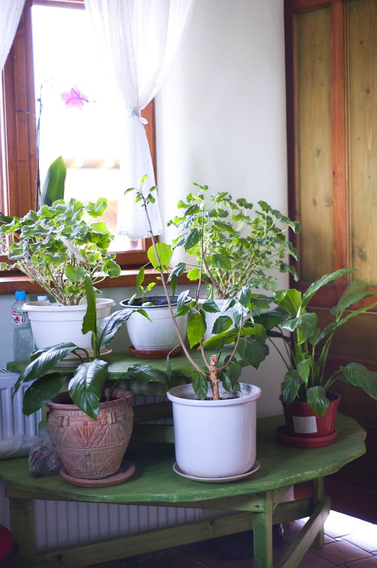 adelaparvu.com despre casa din chirpici la Ciolpani, Poiana Florilor, designer Elena Vasiliu arh. Raluca Suru, Foto Dragos Boldea (18)