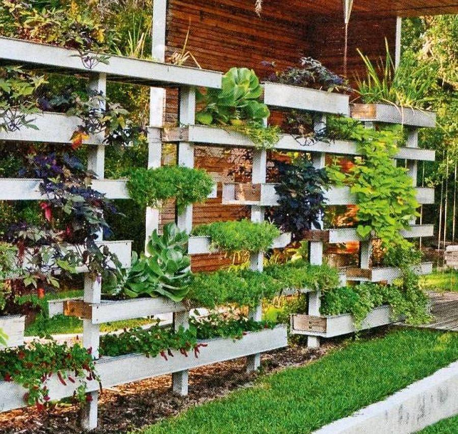 Home Garden Design Ideas India: Plante Pe Verticală. Hai Să Vezi 10 Idei Pentru Balcon și