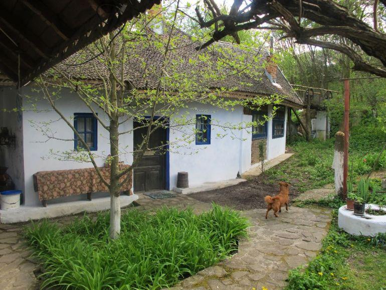 adelaparvu.com despre casa Ioanei Craciunescu, casa taraneasca romaneasca (59)