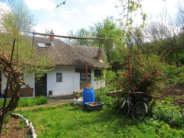 adelaparvu.com despre casa Ioanei Craciunescu, casa taraneasca romaneasca (71)