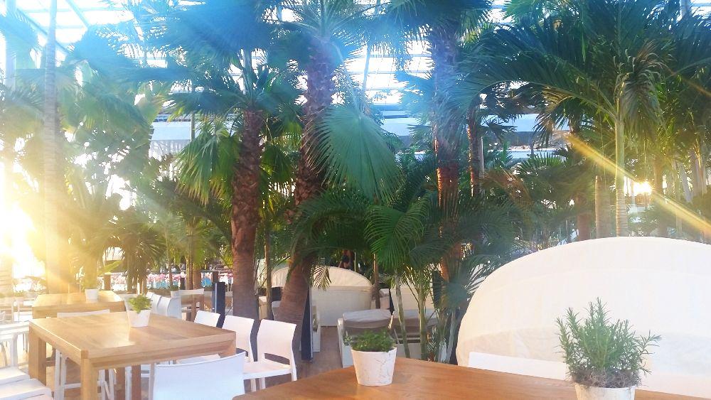 adelaparvu.com despre Therme Bucuresti, zona The Palm (26)