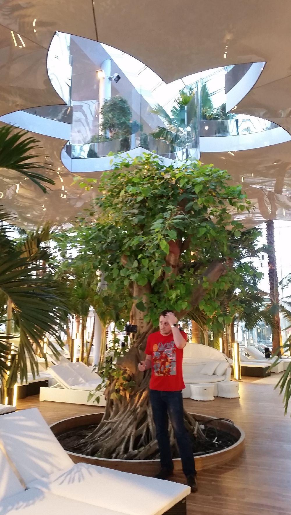 adelaparvu.com despre Therme Bucuresti, zona The Palm (34)
