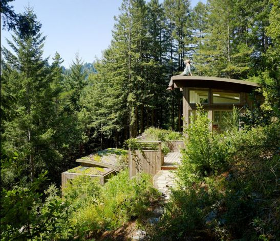 adelaparvu.com despre Mill Valley Cabins Foto Joe Fletcher (8)