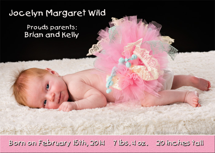 Mounds View Baby Photographer Jocelyn\u0027s Newborn Baby Announcement