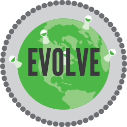 PEER Strategy | Evolve | Loyalty Bound