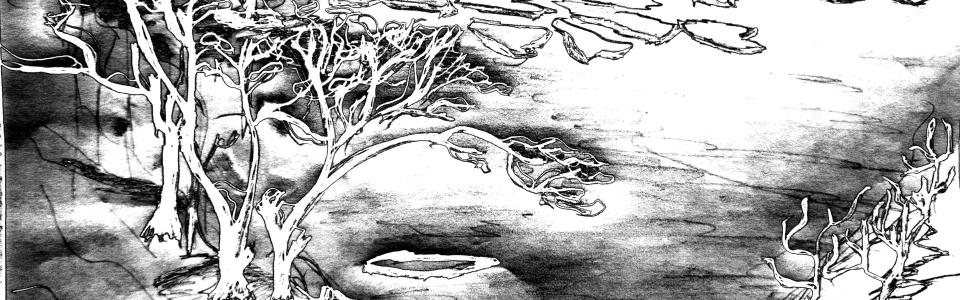 adina hut-1547-2