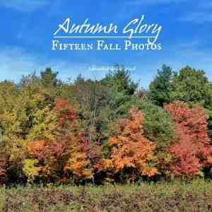 Autumn Glory: 15 Fall Photographs