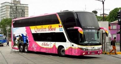 gyps37 - zeus - 97 - queilen bus - puerto montt