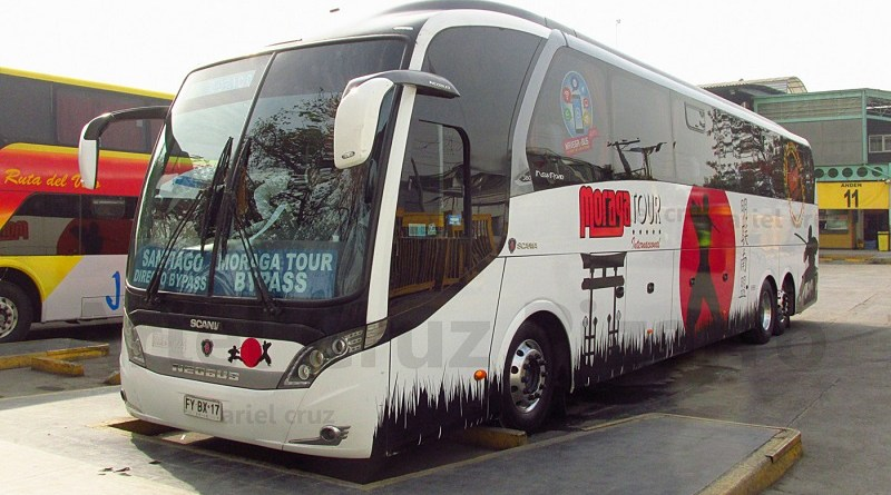 fybx17 - neobus new road n10 380 - moraga tour - terminal sur - 2916