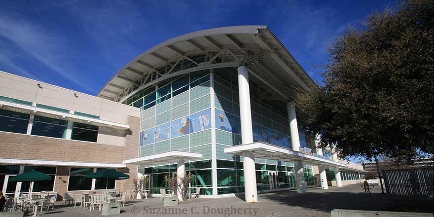 HELP! Do I have a good chance to get into UC Davis/UC San Diego/ UC Berkeley?