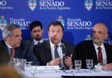 SENADO-PLENARIO COMISIONES-HIDROCARBUROS