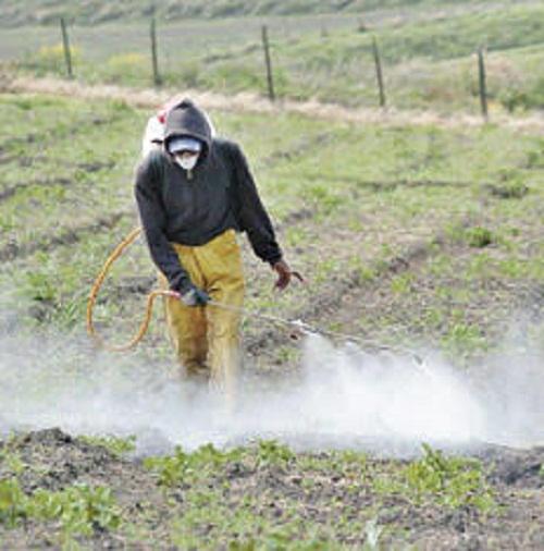 Un estudio del INTA señala que los plaguicidas quedan en el suelo hasta seis meses