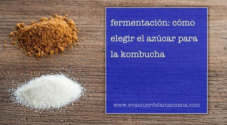 Fermentación: Cómo elegir el azúcar para la kombucha (18:00 h)