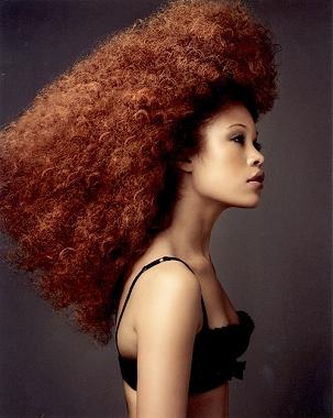 penteados-para-cabelos-crespos-e-afro (11)