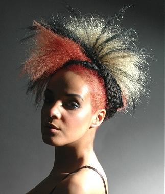 penteados-para-cabelos-crespos-e-afro (19)