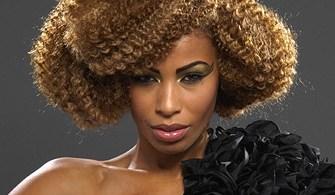 penteados-para-cabelos-crespos-e-afro (4)