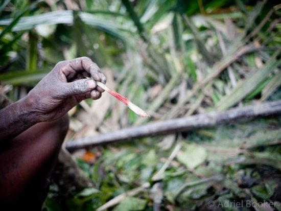 PNG-Bamu-Adriel_Booker - bamboo shard used to cut umbilical cord in rural PNG