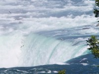 Over the Horseshoe Falls