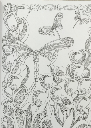Creative Haven Entangled Dragonflies Coloring Book (Adult Coloring